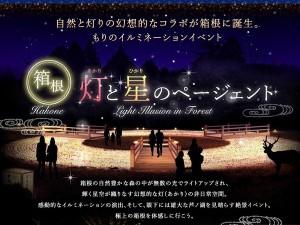 灯(あかり)と星(ひかり)のページェント